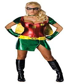 BuySeason Women's Sexy Robin Costume