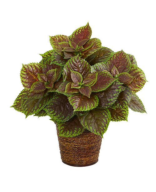 """Nearly Natural 16"""" Coleus Artificial Plant in Basket Real Touch"""