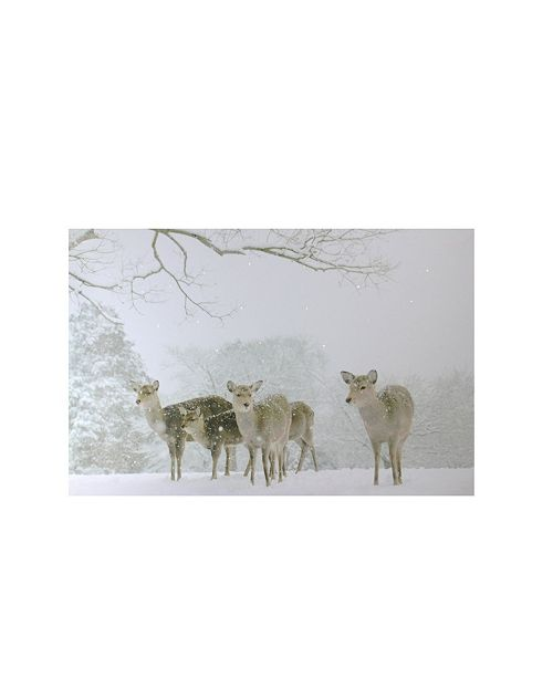"""Northlight Small Fiber Optic Lighted Winter Woods with Deer Canvas Wall Art, 12"""" x 11.75"""""""