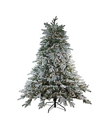 6.5' Pre-Lit Frosted Butte Fir Artificial Christmas Tree - Clear Lights