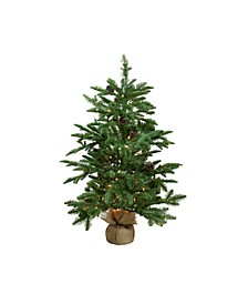3' Pre-Lit Viella Norway Spruce Artificial Christmas Tree - Clear Lights