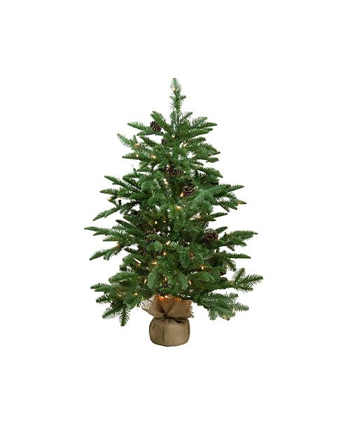 Northlight 3' Pre-Lit Viella Norway Spruce Artificial Christmas Tree - Clear Lights