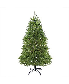 12' Pre-lit Northern Pine Full Artificial Christmas Tree - Warm Clear LED Lights