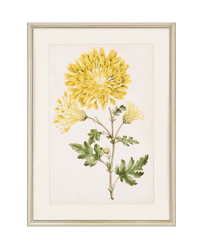 """Paragon Floral Lace IV Framed Wall Art, 30"""" x 22"""""""
