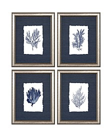 """Coral Framed Wall Art Set of 4, 14"""" x 11"""""""