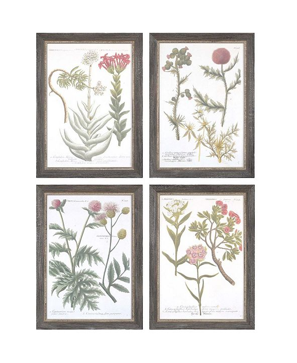 "Paragon Botanical Varieties Framed Wall Art Set of 4, 21"" x 15"""