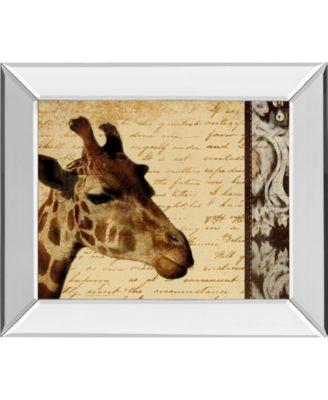 "Madagascar Safari I by Patricia Pinto Mirror Framed Print Wall Art, 22"" x 26"""