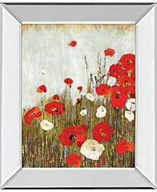 "Scarlet Poppies by Asia Jensen Mirror Framed Print Wall Art, 22"" x 26"""