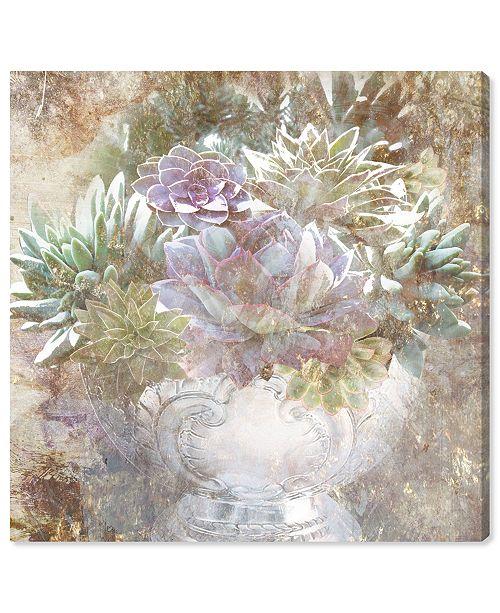 "Oliver Gal Serving Succulents Canvas Art, 24"" x 24"""