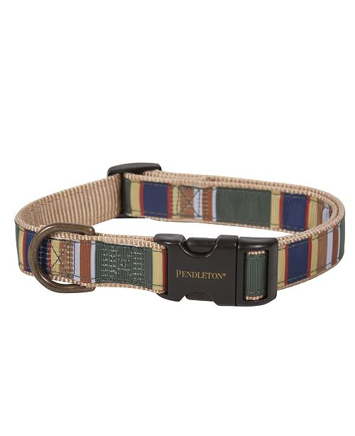 Pendleton Badlands National Park Dog Collar, Small