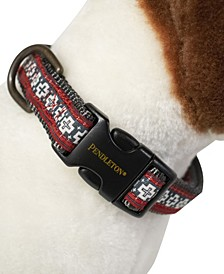 San Miguel Dog Collar, X-Large