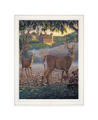 """Field of Dreams by Kim Norlien, Ready to hang Framed Print, White Frame, 15"""" x 19"""""""