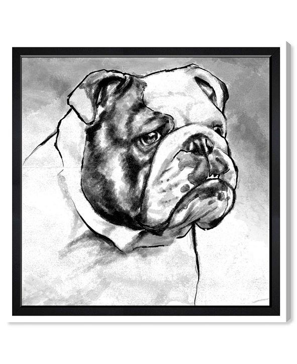 "Oliver Gal English Bulldog Canvas Art, 36"" x 36"""