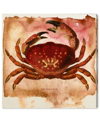 The Red Crab Canvas Art, 36