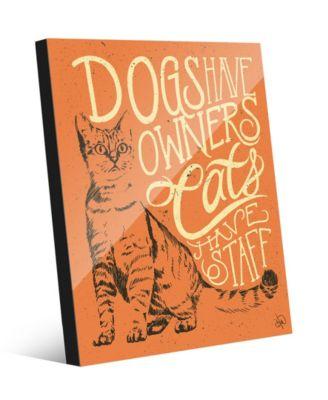 "Cats Have Staff - Tabby on Orange 20"" x 24"" Acrylic Wall Art Print"