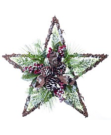 Pinecone Star