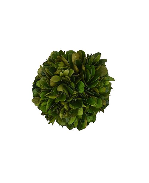 """Mills Floral 4"""" D Ball of Preserved Boxwood - Set of 2"""