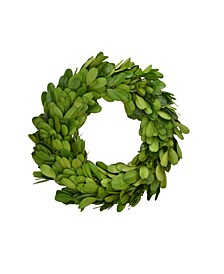 "6"" D Preserved Boxwood Wreath - Set of 3"