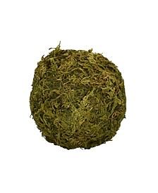 "4"" Mossy Sphere"