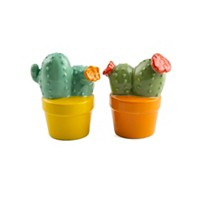 Thirstystone Potted Cactus Salt & Pepper Set