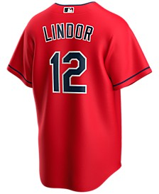 Men's Francisco Lindor Cleveland Indians Official Player Replica Jersey