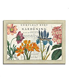 Botany by Sue Schlabach Framed Painting Print