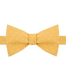 Men's Denver Dot Bow Tie
