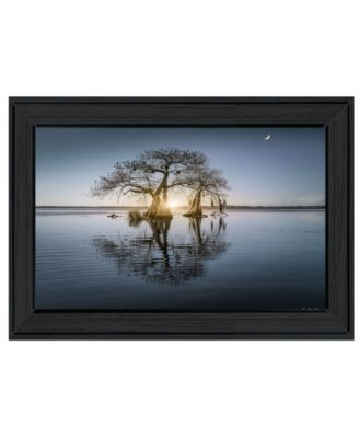 Tree Reflections by Moises Levy, Ready to hang Framed Print, White Frame, 21