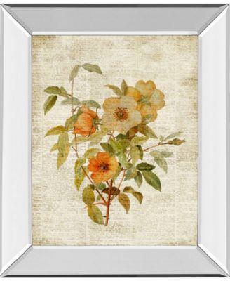 Roses on Newsprint Il by Lanie Loreth Mirror Framed Print Wall Art - 22