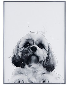 """Shih-Tzu Pet Paintings on Reverse Printed Glass Encased with a Gunmetal Anodized Frame Wall Art, 24"""" x 18"""" x 1"""""""