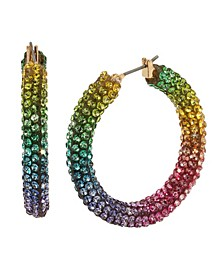 Rainbow Stone Mesh Hoop Earrings