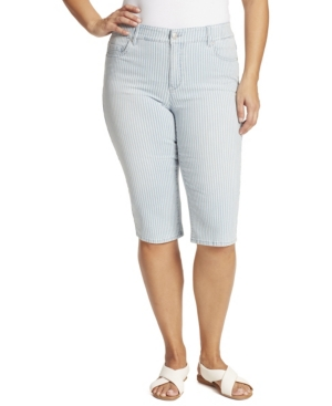 Plus Size Curvy Skinny Skimmer Jeans