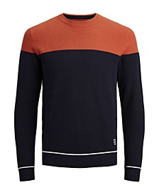 Men's Crew Neck Long Sleeve Knitted Sweater