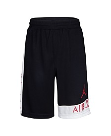 Little Boys Dri-Fit Mesh Shorts
