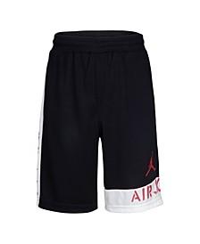 Toddler Boys Dri-Fit Mesh Shorts