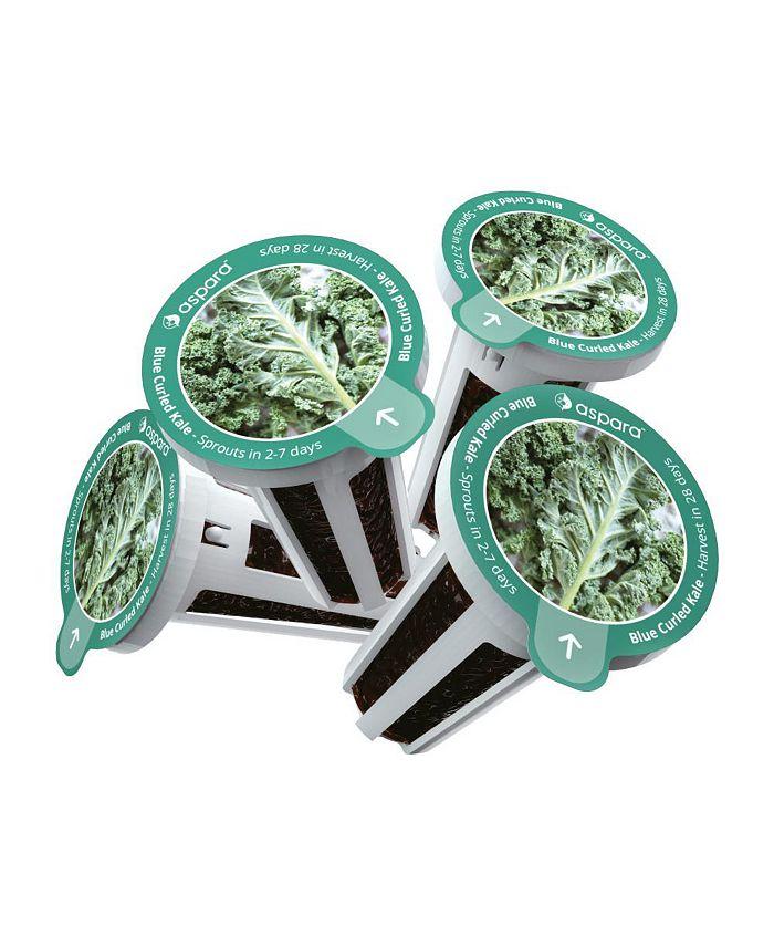 Aspara - KKB0001 8 capsule seed kit - Blue Curled Kale