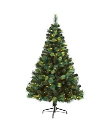 Assorted Scotch Pine Artificial Christmas Tree with 250 LED Lights