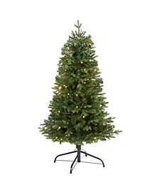 Vermont Fir Artificial Christmas Tree with 100 Clear LED Lights