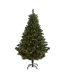 Northern Rocky Spruce Artificial Christmas Tree with 300 Clear Lights and 838 Bendable Branches