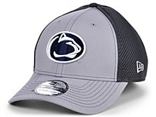 Penn State Nittany Lions Grayed Out Neo Cap