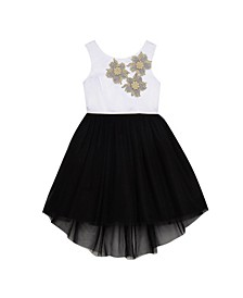 Big Girls Tulle Skirt with Applique Bodice Dress