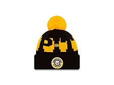 Pittsburgh Steelers 2020 Sport Knit
