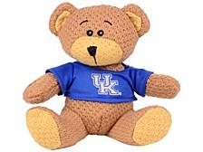 Kentucky Wildcats Crochet Bear