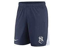 Men's New York Yankees Icon Franchise Shorts
