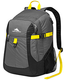 CLOSEOUT! High Sierra Sportour Laptop Backpack