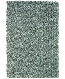 Super Soft Shag 8' x 10' Area Rug
