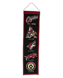 Winning Streak Arizona Coyotes Heritage Banner
