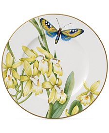 Amazonia Collection Bone Porcelain Bread & Butter Plate