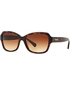 Sunglasses, HC8160