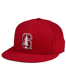 Nike Stanford Cardinal True Vapor Fitted Cap
